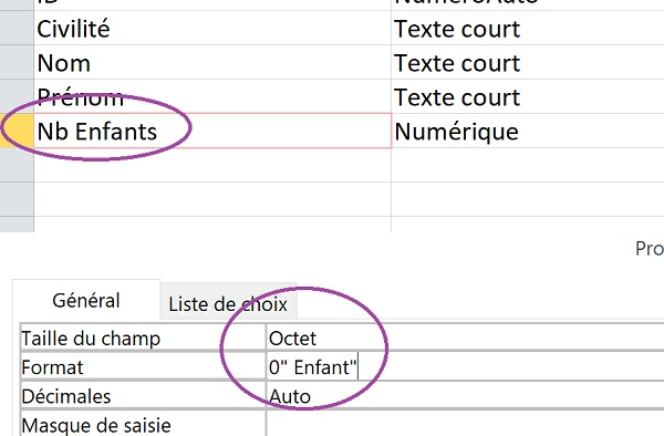 Formater champ de table Access pour accord grammatical
