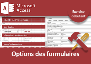 Personnaliser les formulaires, exercice Access